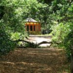 RANCHO NO ROÇADO :Ricardo Coutinho deve ter gabinete ecológico na Mata do Buraquinho