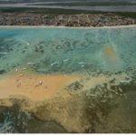 Lucena, no litoral norte da Paraíba, quer ser referência na prática de esportes de praia