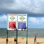 Família pretende processar Estado por morte de turista atacada por tubarão