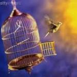 DA SÉRIE, NÃO SEI SE VALE A PENA LER DE NOVO : Liberdade (por vavadaluz)