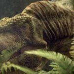 Como a descoberta de uma nova espécie pode explicar o poder do tiranossauro rex