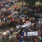 Deputados aprovam Frente Parlamentar em Defesa da Vaquejada na Assembleia Legislativa da Paraíba