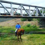 ESSA EU VI NA TOCA DO LEÃO DO POETA FABIO MOZART : Secretário ecológico vai dar expediente a cavalo