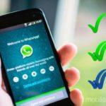 Whats App ganha atualização que permite postagens de snaps