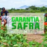 Agricultores de Riachão do Bacamarte e mais oito municipios recebem garantia safra este mês