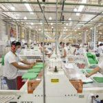 PÉSSIMA NOTICIA : Alpargatas vai ser colocada novamente à venda