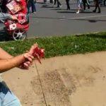 SE TIVESSE EM CASA…:  manifestante tenta jogar rojão contra PM e fica com a mão dilacerada (Veja vídeo)
