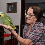 OCUPANDO QUEM NÃO TEM O QUE FAZER : Ibama recorre mais uma vez à Justiça para apreender o papagaio Leozinho