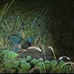 Mulher encontrada morta em CG continua sem identificação. NUMOL busca por familiares
