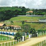 Conhecendo a Paraíba: Umbuzeiro  (Thomas bruno)