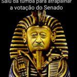 A mijadinha do Senador  (por Marcos Marinho)