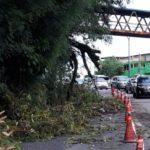 ATENÇÃO ! : Ventos ultrapassaram os 100 km/h no Rio