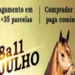 HARAS DE INGA DISPONIBILIZA ANIMAIS QUARTO DE MILHAS EM LEILÃO