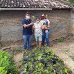 Comunidade faz plantio de mudas no Dia da Árvore com apoio da Empaer e Ingá da exemplo
