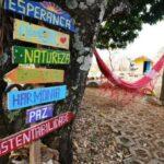 Ministério do Turismo divulga dados sobre Turismo Rural e revela importância do segmento